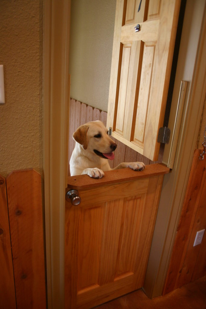 About Hill Country Pet Ranch In Boerne Tx